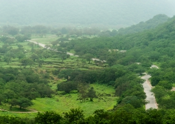 Oman-salalah_monsoon